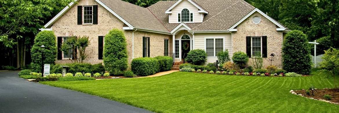 curb appeal landscaping charlotte on a budget savannah ga ways professional increase home
